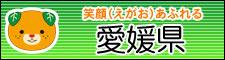 愛媛県ホームページ